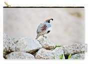 Gambel's Quail Carry-all Pouch by Scott Pellegrin