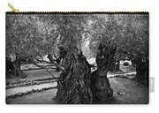 Garden Of Gethsemane Olive Tree Carry-all Pouch