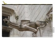 Gargoyle Cathedral Tours Carry-all Pouch