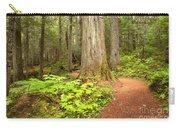Garibaldi Wilderness Rainforest Carry-all Pouch