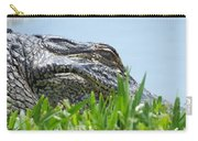 Gator Watching Carry-all Pouch
