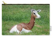 Gazelle At Rest 1 Carry-all Pouch