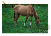Gazing Horse Carry-all Pouch