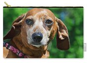 Gem The Miniature Dachshund Carry-all Pouch