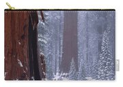 2m6835-general Sherman Tree - Giant Sequoias Carry-all Pouch