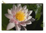 Gently Pink Waterlily In The Hot Mediterranean Sun Carry-all Pouch