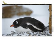 Gentoo Penguin On Nest Carry-all Pouch