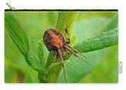 Genus Araneus Orb Weaver Spider - Brown And Orange Carry-all Pouch