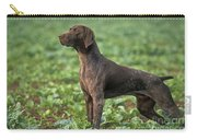 German Short-haired Pointer Carry-all Pouch