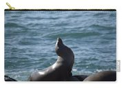 Get My Good Side.... Carry-all Pouch