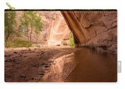 Giant Alcove Coyote Gulch - Utah Carry-all Pouch