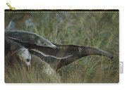 Giant Anteater And  Young In Cerrado Carry-all Pouch