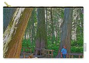 Giant Cedar Grove On Giant Cedars Trail In Mount Revelstoke Np-bc Carry-all Pouch