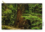 Giant Douglas Fir Trees Collection 3 Carry-all Pouch