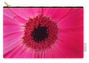 Flower Photography - Giant Pink Gerbera Daisy Carry-all Pouch