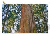 Giant Sequoia Trees Of Tuolumne Grove In Yosemite National Park. Carry-all Pouch
