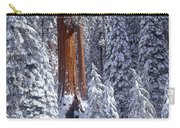 Giant Sequoia Trees Sequoiadendron Carry-all Pouch