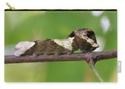Giant Swallowtail Caterpillar Carry-all Pouch