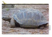 The Giant Aldabra Tortoise Carry-all Pouch