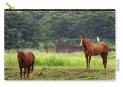 Giddy Up Horsy By Diana Sainz Carry-all Pouch