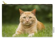 Ginger Cat In Garden Carry-all Pouch