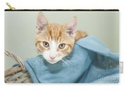 Ginger Kitten In A Basket Carry-all Pouch