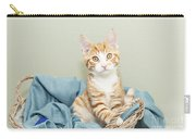 Ginger Kitten Standing In A Basket Carry-all Pouch