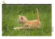 Ginger Tabby Kitten Carry-all Pouch