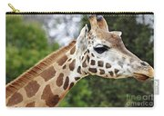 Giraffe Beauty Carry-all Pouch