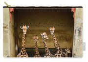 Giraffes Lineup Carry-all Pouch