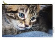 Gizmo Feeling Blue Carry-all Pouch