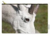 Glacier Goat Carry-all Pouch