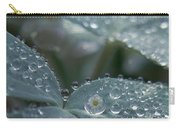 Glass Daisies Carry-all Pouch
