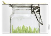 Glass Jar Carry-all Pouch