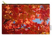 Glowing Fall Maple Colors 3 Carry-all Pouch