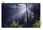 God Rays Through The Fog Carry-all Pouch