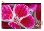 Godetia Pink And White Flower Carry-all Pouch