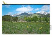 Golden Banner In Horseshoe Park In Rocky Mountain Np-co- Carry-all Pouch