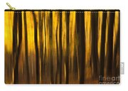 Golden Blur Carry-all Pouch by Anne Gilbert