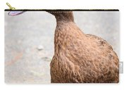Golden Brown Feathers Carry-all Pouch