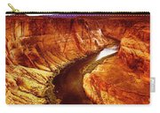 Golden Canyon Carry-all Pouch