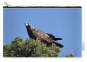 Golden Eagle Carry-all Pouch