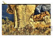 Golden Hoodoo Carry-all Pouch
