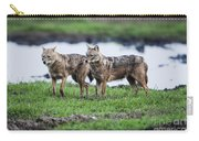 Golden Jackal Canis Aureus Carry-all Pouch