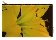 Golden Lily Glow Carry-all Pouch