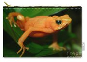 Golden Mantella Carry-all Pouch