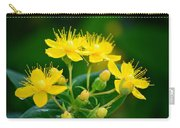 Golden Miracles Carry-all Pouch