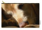 Golden Retriever Dog Sleeping In The Morning Light  Carry-all Pouch by Jennie Marie Schell
