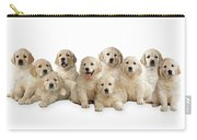 Golden Retriever Puppies, In A Line Carry-all Pouch