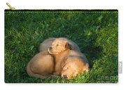 Golden Retriever Puppies Sleeping Carry-all Pouch by Linda Freshwaters Arndt